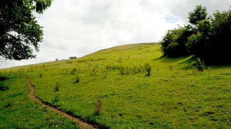 Brændholt Bjerg